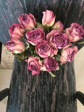 12 Dried Ivory Roses With Lavender Edges For Bouquet, Wreaths, Weddings, Crafts