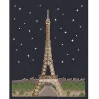 DMC Glow in the D'Architecture Paris by Night Cross Stitch Kit Mr X Stitch