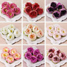 10Pcs Artificial Peony Silk Flower Heads Champagne Bouquet Wedding Home Decor
