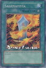 Yu-Gi-Oh ! Carte Salamandra SDD-E003 -US/ Secret Rare