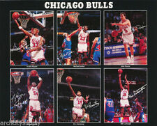 Chicago Bulls Men's Sports Fan Apparel and Souvenirs