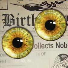 Glass Creature Eyes Realistic Taxidermy Doll Eyeball 12mm Set
