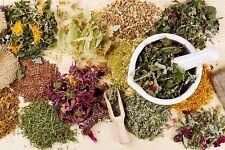 Ultimate Herbal Medicine Holistic Remedies DVD-ROM 114 Books Prepper Herbs Spice