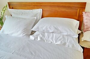 Queen Bed Sheet Set Egyptian Cotton White Stripe 4 Pcs Commercial Quality