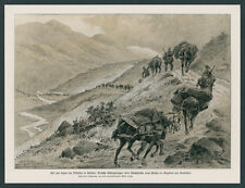 Albert Reich DT. Alpine Corps Serbia Bergland Novi Pazar raška Balkan front 1915