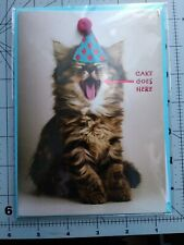 Papyrus Cat With Party Hat Happy Birthday Card