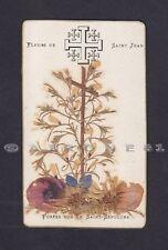 SANTINO 156 FLEURS DE SAINT JEAN - HOLY CARD RELIQUIA RELIC