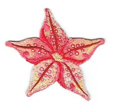 Iron On Embroidered Applique Patch - Natural Tropical Starfish Sea Star