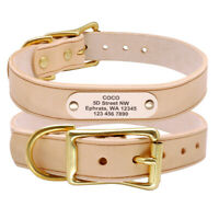 Personalised Genuine Leather Dog Collars Pet Name ID Collar Tags Brass Buckle XL