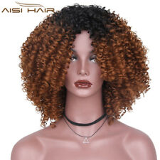 Long Afro Curly Hair Full Synthetic Ombre Brown Wigs Two Tone Wigs for Women