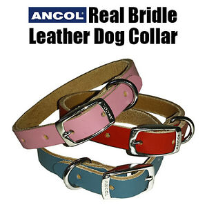 Ancol Leather Dog Collar Real Colourful Pet Puppy XS Small Pink Blue Red