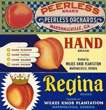 "(3) RARE OLD ORIGINAL ""PEERLESS*HAND*REGINA"" PEACH LABELS MARSHALLVILLE GEORGIA"