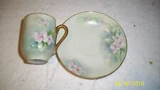 O. & E. G. Royal Austria Cup and Saucer, Floral  Hand Painted