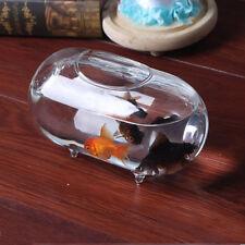 18cm Oval Transparent Flower Glass Vase Mini Fish Tank Aquarium Water Jar
