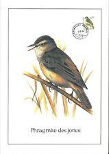 FDC 2577 - Oiseau Buzin sur gravure format A4 !
