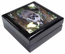 Ragdoll Cat in Tree Keepsake/Jewellery Box Christmas Gift, AC-179JB
