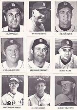 "1978 DETROIT TIGERS TEAM SET ""DEARBORN BASEBALL CARD SET"" 17 DIFFERENT KALINE"