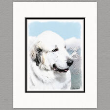 Great Pyrenees Dog Original Print 8x10 Matted to 11x14