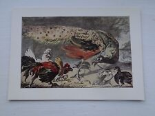 Old Art Postcard Unposted Peacock & Poultry Melchior d'Hondecoeter
