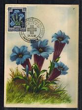 1951- -Autriche(Osterreich)-Croix-Rouge-Carte Maximum-Fleurs-Flowers-Réf.C.41