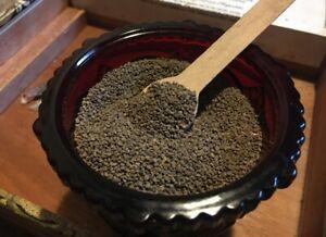 Black Henbane (Hyoscyamus niger) Seeds | 10,000+ | Wildcrafted Wiccan Herb