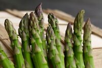 150 Mary Washington Asparagus Seeds - Non-GMO - Heirloom Asparagus