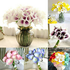 2×Colorful Calla Lily Bulb Flower Roots (it's not seed) Home Garden Random Sent