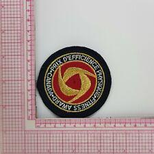 Gold Canada Fitness Award Patch Badge Applique Crest Logo B7