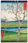 HIROSHIGE - OUTSKIRTS OF KOSHIGAYA POSTER - 24x36 - ART 34388
