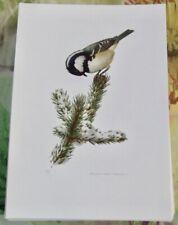 Planche Affiche poster art print Image Ornithologie Mésange Noire