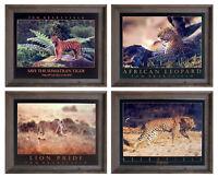 African Jungle Leopard Wildlife Animal Four Set 16x20 Framed Wall Decor Art
