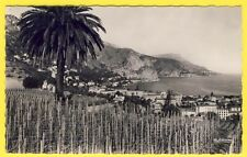 cpsm Rare BEAULIEU sur MER (Alpes Maritimes) Fleurs PLANTATION d'OEILLETS