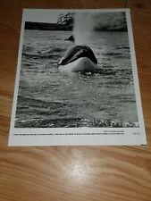 Lot de 3 photos du film SAUVEZ WILLY 2  par Sidney Baldwin