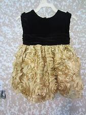 New Girls Velvet & Gold Roses Dress 12 Months Dressy Wedding