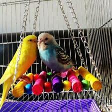 Colorful Parrot Parakeet Bird Cage Hammock Swing Hanging Playing Toys New JJ