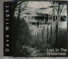 (AD979) Dave Wright, Lost In The Wilderness - DJ CD
