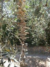Girlande Windspiel 1,40 m aus Treibholz Holz natur Shabby chic Dekoration Garten