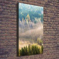 Leinwand-Bild Kunstdruck Hochformat 70x140 Bilder Nebel über dem Wald