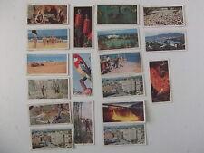 Card-Lyons Tea cards 'Australia' x18