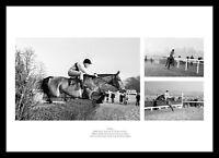 Arkle Montage Horse Racing Photo Memorabilia (ARKMU01)