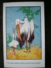 POSTCARD COMIC/ SEASIDE HUMOUR YES BUT WHERE DID I COME FROM ASKED THE STORK