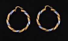 Brazilian Gold Filled Earring with Gold and Silver