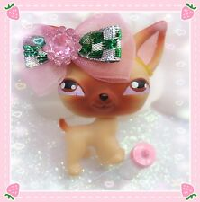 Littlest Pet Shop Dog Puppy Chihuahua Tan Brown # 1 Authentic LPS + Accessories
