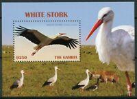 Gambia 2019 MNH White Stork 1v S/S Storks Birds Stamps