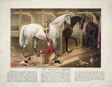 "1868 Horse Racing,  Jockey, Dog Chicken, STABLE, 14""x11"" Print, Beautiful Print"