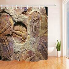 """Ancient Trilobites in Stone 70"""" Bathroom Shower Curtain Waterproof Fabric & Hook"""