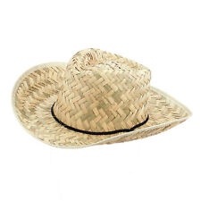 Straw Cowboy Hat Stetson Mens Womens Band Ladies Mens Fedora Summer