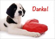 DIN A6 Postkarte Ansichtskarte Dankeskarte Hundepostkarte Hund mit Herz Danke!