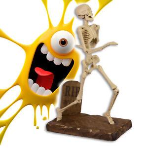 Halloween Eisenguss Skelett makaber Geschenk zur Party Gag Curios Dekoration