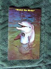 "Vintage Postcard ""Watch The Birdie"", Florida Dolphin With Camera"